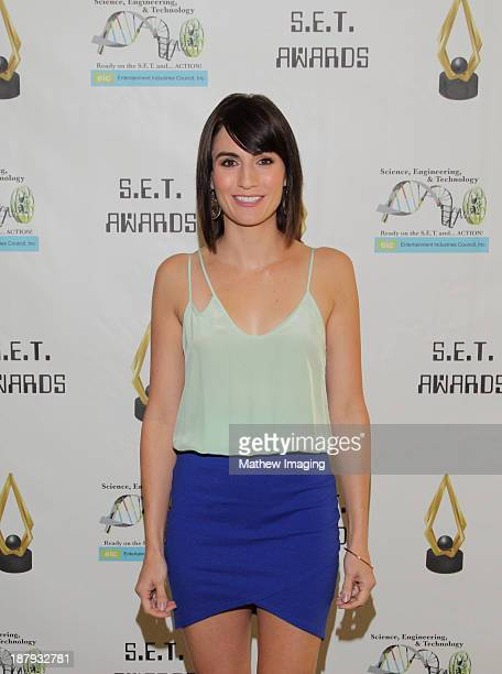 Actress Alison Haislip attends the 3rd Annual SET Awards at the Beverly Hills Hotel on November 13 2013 in Beverly Hills California