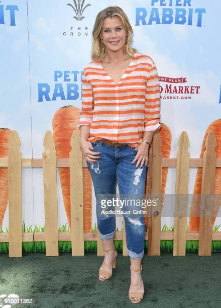 Actress Alison Sweeney attends the Los Angeles Premiere of 'Peter Rabbit' at The Grove on February 3 2018 in Los Angeles California
