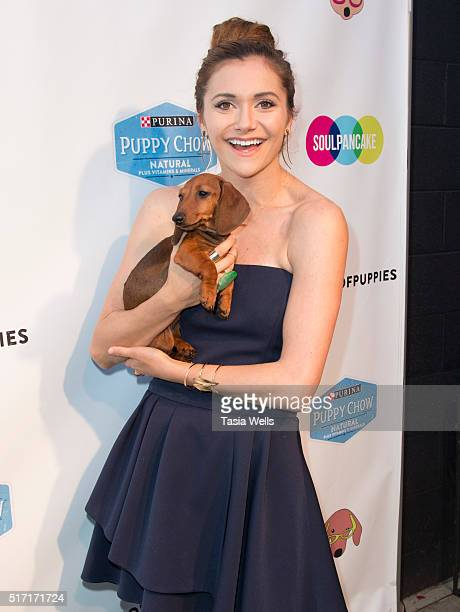 Actress Alyson Stoner attends SoulPancake's Puppypalooza Party at SoulPancakes Headquarters on March 23 2016 in Los Angeles California