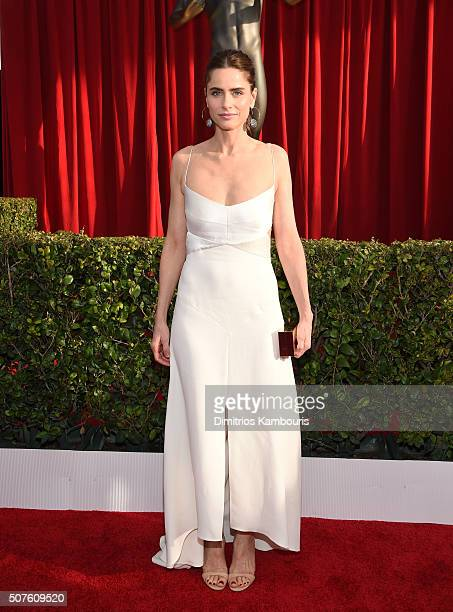 Actress Amanda Peet attends The 22nd Annual Screen Actors Guild Awards at The Shrine Auditorium on January 30 2016 in Los Angeles California 25650_013