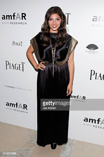 Actress Amanda Setton attends the 2010 amfAR New York Inspiration Gala at The New York Public Library on June 3 2010 in New York New York