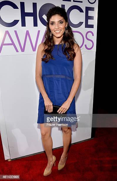 Actress Amanda Setton attends The 40th Annual People's Choice Awards at Nokia Theatre LA Live on January 8 2014 in Los Angeles California