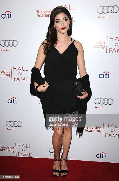 Actress Amanda Setton attends the Television Academy's 23rd Hall of Fame induction gala at Regent Beverly Wilshire Hotel on March 11 2014 in Beverly...