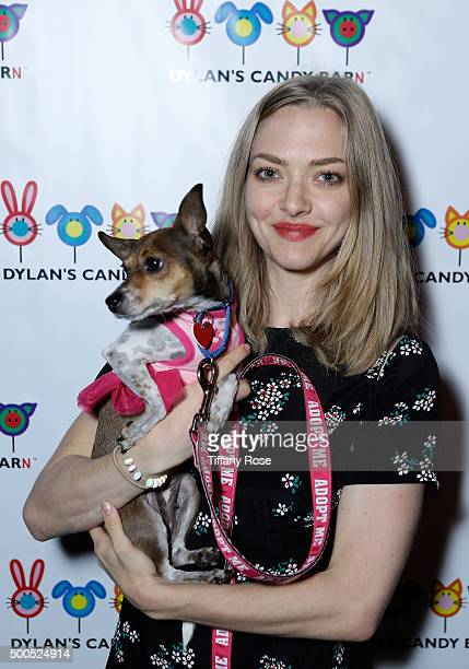 Actress Amanda Seyfried attends the Dylan's Candy BarN launch event at Dylan's Candy Bar on December 8 2015 in Los Angeles California