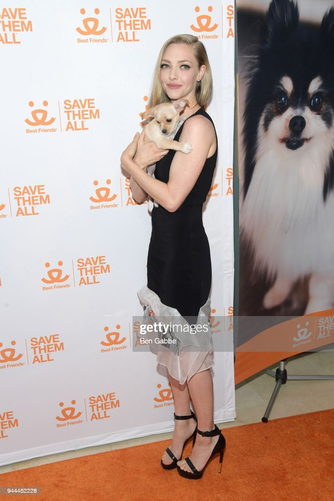 Actress Amanda Seyfried holds a puppy at the Best Friends Animal Society's 3rd Annual New York City Gala at Guastavino's on April 10, 2018 in New York City.