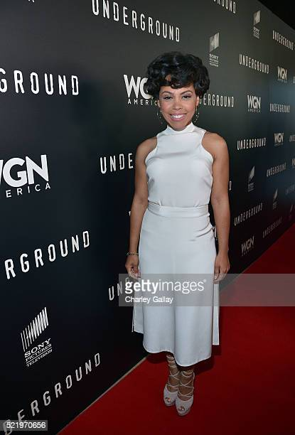 Actress Amirah Vann attends WGN America's Underground For Your Consideration Emmy Event on April 17 2016 in Beverly Hills California