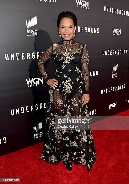 Actress Amirah Vann attends WGN America's Underground World Premiere on March 2 2016 in Los Angeles California