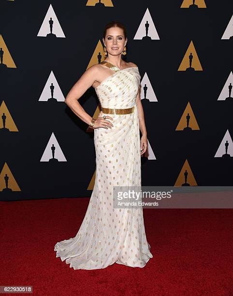 Actress Amy Adams arrives at the Academy of Motion Picture Arts and Sciences' 8th Annual Governors Awards at The Ray Dolby Ballroom at Hollywood...