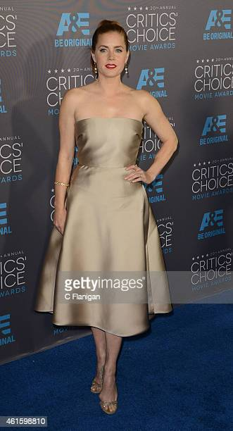 Actress Amy Adams arrives to The 20th Annual Critics' Choice Movie Awards at Hollywood Palladium on January 15 2015 in Los Angeles California