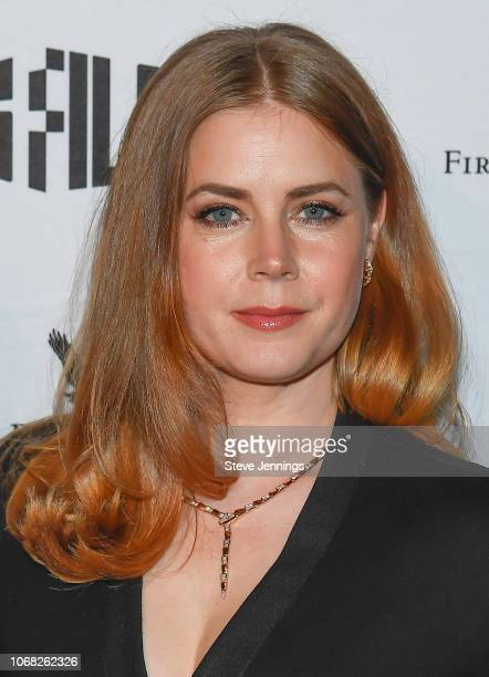 Actress Amy Adams attends the 2018 SFFILM Awards Night to recieve the Peter J. Owens Award for Acting at Palace Of Fine Arts Theater on December 3,...