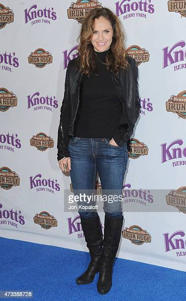 Actress Amy Brenneman arrives at Knott's Berry Farm Launches Voyage To The Iron Reef at Knott's Berry Farm on May 14 2015 in Buena Park California