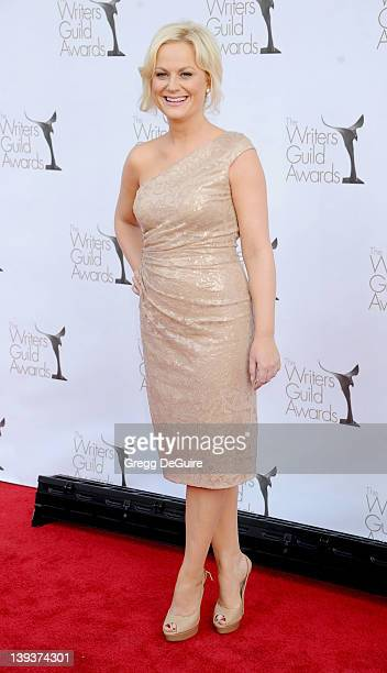 Actress Amy Poehler arrives at 2012 Writers Guild Awards at The Hollywood Palladium on February 19 2012 in Los Angeles California