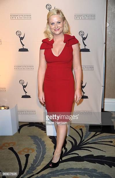Actress Amy Poehler arrives at the Academy Of Television Arts & Sciences' 19th Annual Hall Of Fame Induction at the Beverly Hills Hotel on January...