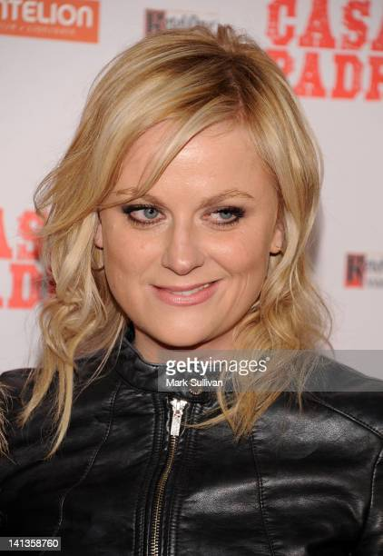 """Actress Amy Poehler arrives for the Los Angeles Premiere of """"Casa De Mi Padre"""" at Grauman's Chinese Theatre on March 14, 2012 in Hollywood,..."""