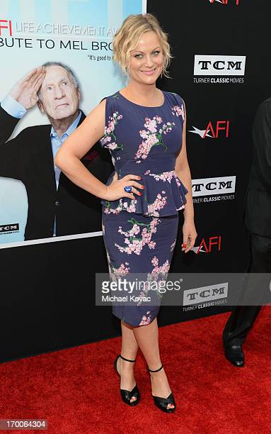 Actress Amy Poehler attends 41st AFI Life Achievement Award Honoring Mel Brooks at Dolby Theatre on June 6 2013 in Hollywood California Special...