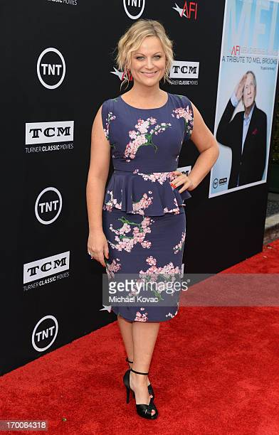 Actress Amy Poehler attends 41st AFI Life Achievement Award Honoring Mel Brooks at Dolby Theatre on June 6, 2013 in Hollywood, California. Special...