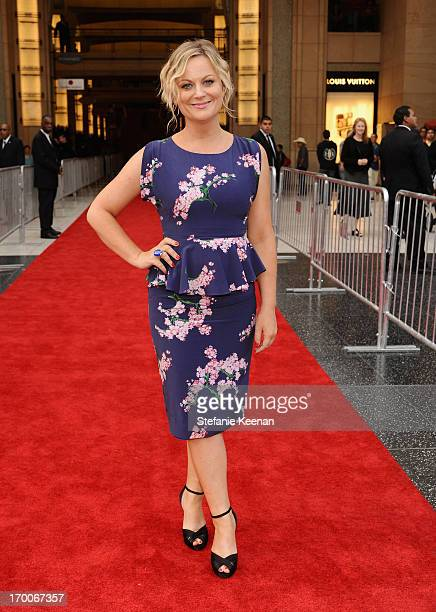 Actress Amy Poehler attends AFI's 41st Life Achievement Award Tribute to Mel Brooks at Dolby Theatre on June 6, 2013 in Hollywood, California....
