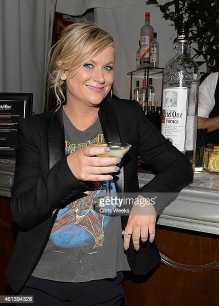 Actress Amy Poehler attends her and Tina Fey's Annual Golden Globes after party at Chateau Marmont on January 11 2015 in Los Angeles California