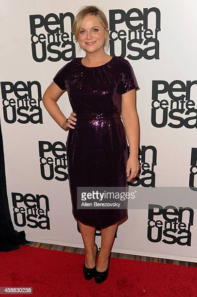 Actress Amy Poehler attends Pen Center USA's 24th Annual Literary Awards Festival at the Beverly Wilshire Four Seasons Hotel on November 11, 2014 in...