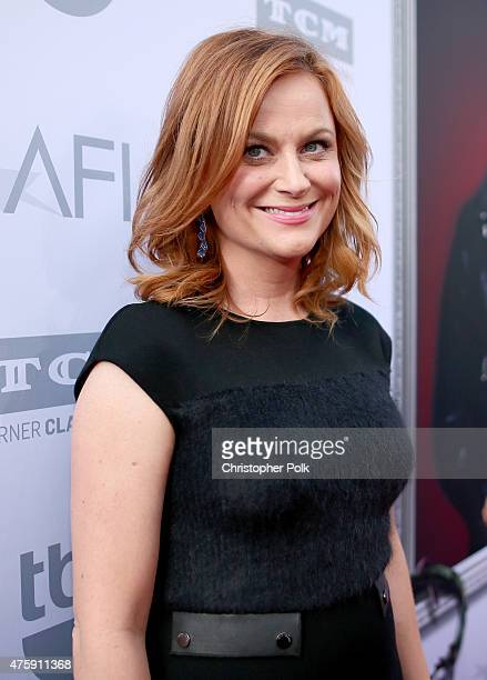 Actress Amy Poehler attends the 2015 AFI Life Achievement Award Gala Tribute Honoring Steve Martin at the Dolby Theatre on June 4 2015 in Hollywood...