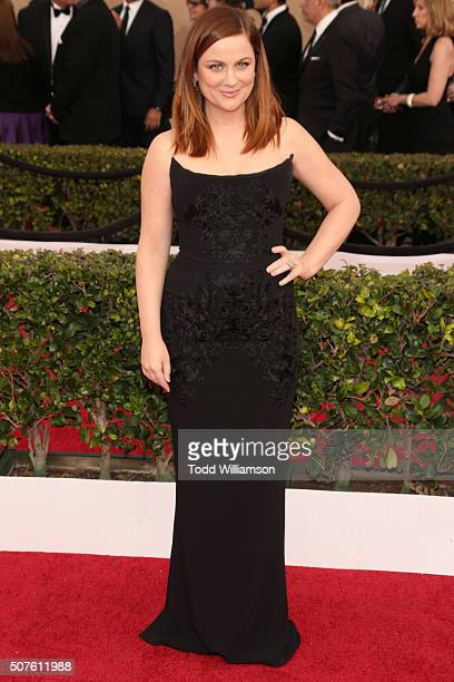 Actress Amy Poehler attends the 22nd Annual Screen Actors Guild Awards at The Shrine Auditorium on January 30, 2016 in Los Angeles, California.