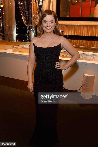 Actress Amy Poehler attends The 22nd Annual Screen Actors Guild Awards at The Shrine Auditorium on January 30 2016 in Los Angeles California 25650_021