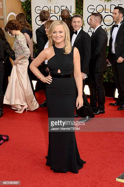 Actress Amy Poehler attends the 71st Annual Golden Globe Awards held at The Beverly Hilton Hotel on January 12 2014 in Beverly Hills California