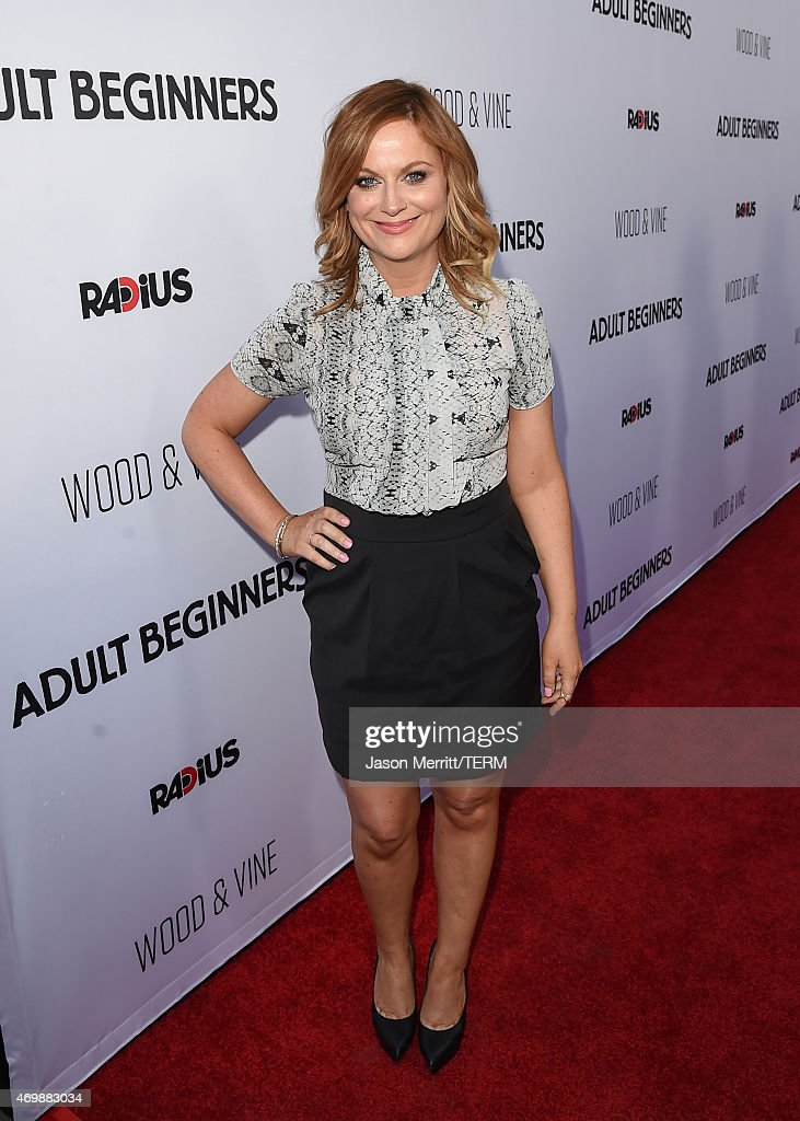 Actress Amy Poehler attends the premiere of 'Adult Beginners' at ArcLight Hollywood on April 15, 2015 in Hollywood, California.