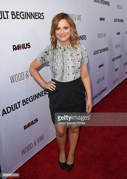 Actress Amy Poehler attends the premiere of Adult Beginners at ArcLight Hollywood on April 15 2015 in Hollywood California