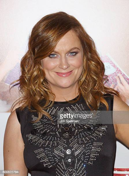 """Actress Amy Poehler attends the """"Sisters"""" New York premiere at Ziegfeld Theater on December 8, 2015 in New York City."""
