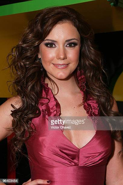 Actress Ana Belena attends the 'La Loba' Soap Opera launch press conference and photo call at Restaurante El Lago on February 3 2010 in Mexico City...