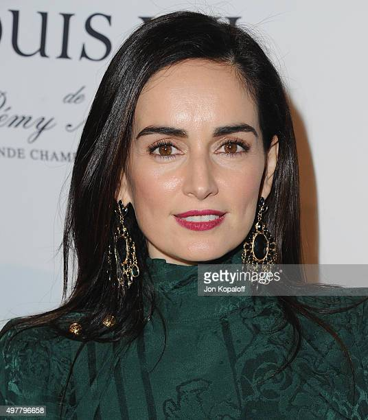 Actress Ana de la Reguera arrives at LOUIS XIII Toasts To 100 Years The Movie You Will Never See at Sheats Goldstein Residence on November 18 2015 in...