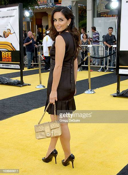 Actress Ana de la Reguera arrives at the Los Angeles Bee Movie premiere at the Mann Village Theatre on October 28 2007 in Westwood California