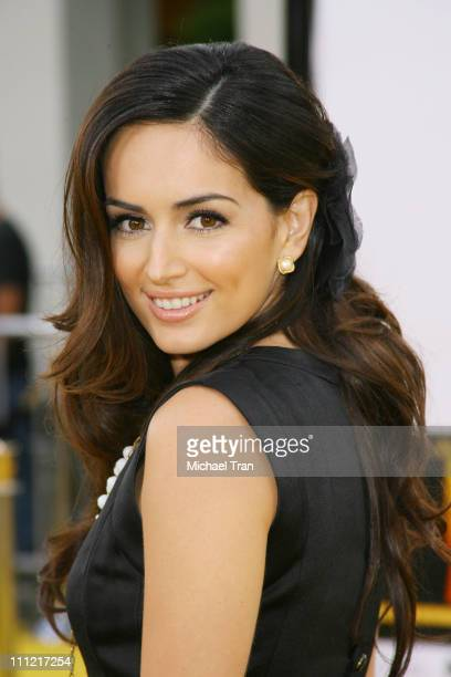 Actress Ana de la Reguera arrives at the Los Angeles Premiere of Bee Movie held at the Mann Bruin Theatre on October 28 2007 in Westwood California