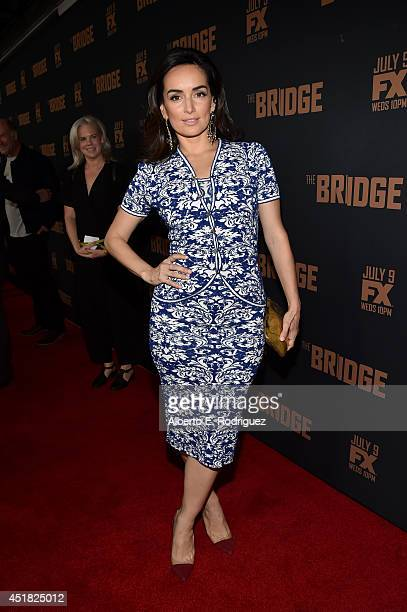 Actress Ana de la Reguera attends the premiere of FX's The Bridge at Pacific Design Center on July 7 2014 in West Hollywood California