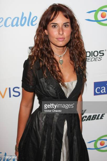 Actress Ana Serradilla attends the 'Mujeres Asesinas' TV show launch on June 13 2008 at the Lunario del Auditorio Nacional in Mexico City