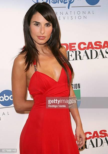 Actress Ana Serradilla poses during Univision's new soap opera 'Amas de Casa Desesperadas' launch party at Karu and Y January 8 2008 in Miami Florida