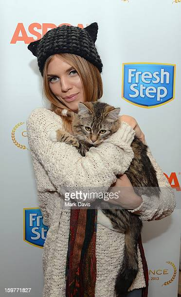 Actress and cat lover AnnaLynne McCord debuts catinspired hat to benefit the ASPCA at the Fresh Step Catdance Film Festival on January 19 2013 in...