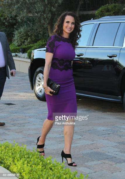 Actress Andie MacDowell attends the Hallmark Channel and Hallmark Movie Channel's 2013 Summer TCA Party on July 8, 2014 in Beverly Hills, California.