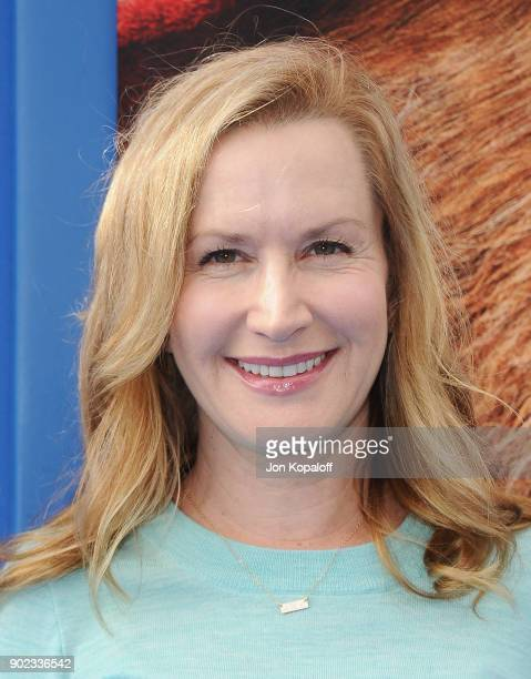Actress Angela Kinsey attends the Los Angeles Premiere 'Paddington 2' at Regency Village Theatre on January 6 2018 in Westwood California