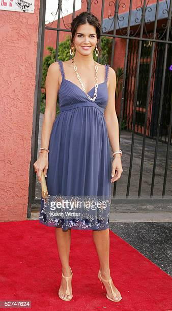 Actress Angie Harmon arrives at the 7th Annual Young Hollywood Awards at the Music Box/Henry Fonda Theater on May 1 2005 in Los Angeles California