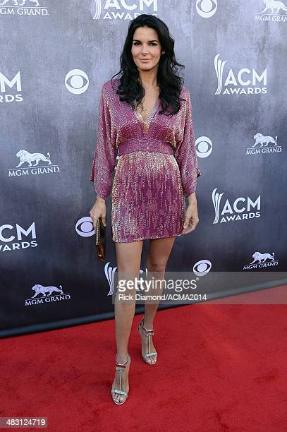 Actress Angie Harmon attends the 49th Annual Academy of Country Music Awards at the MGM Grand Garden Arena on April 6 2014 in Las Vegas Nevada
