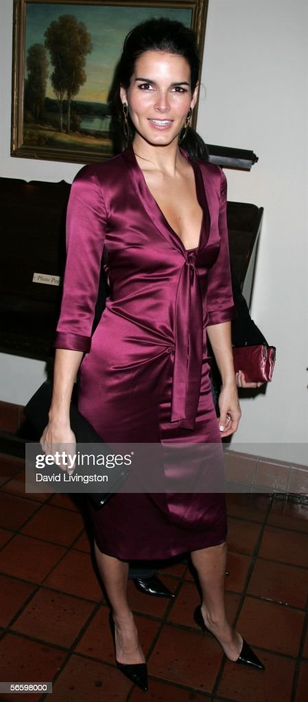 Actress Angie Harmon poses at HBO's Annual Pre-Golden Globe Reception at Chateau Marmont on January 14, 2006 in Los Angeles, California.