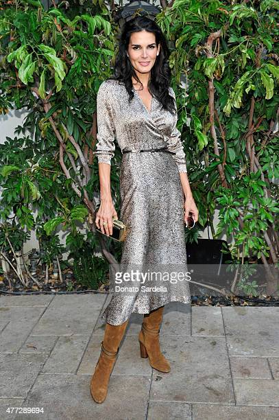 Actress Angie Harmon, wearing Max Mara, attends The Max Mara 2015 Women In Film Face Of The Future event at Chateau Marmont on June 15, 2015 in West...