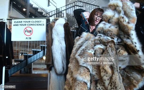 TOPSHOT Actress Anjelica Huston cuts her Lynx fur coat which she donated to PETA in Los Angeles California on January 30 2018 / AFP PHOTO / Frederic...