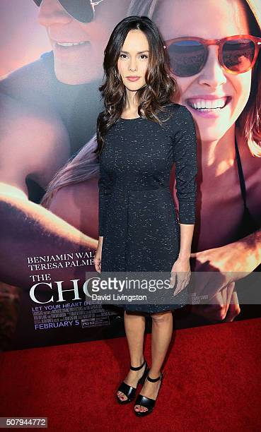 Actress Anna Enger attends the premiere of Lionsgate's The Choice at ArcLight Cinemas on February 1 2016 in Hollywood California