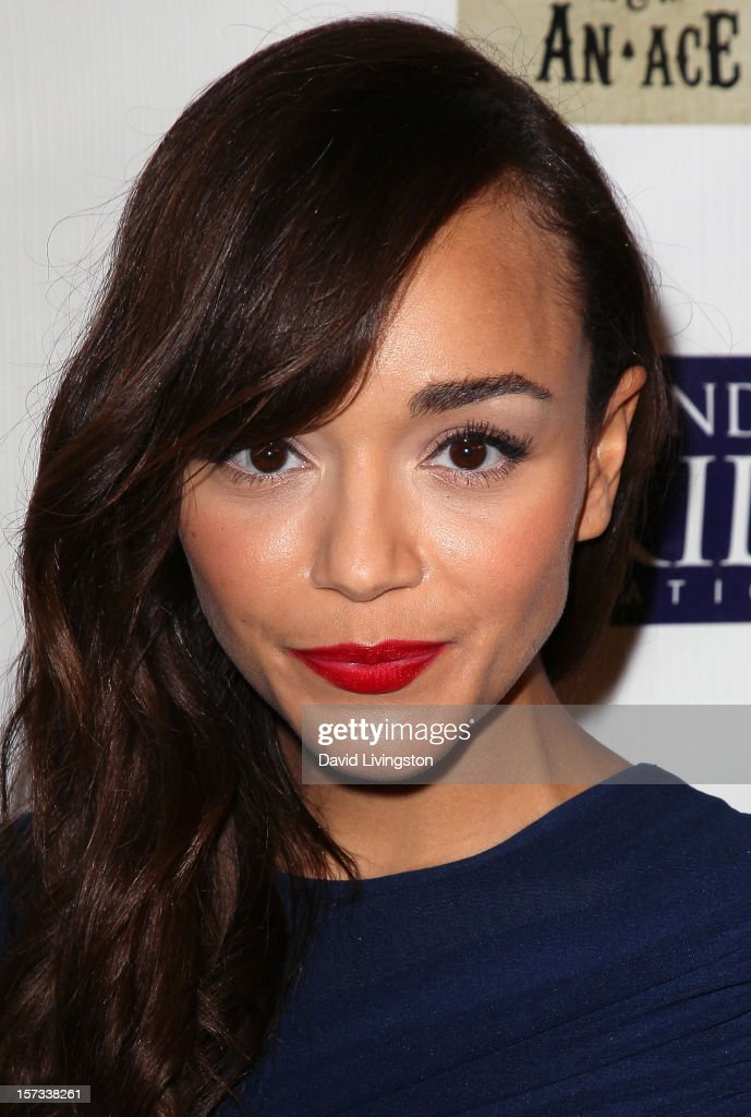 Actress Ashley Madekwe attends Mending Kids International's 'Four Kings & An Ace' Celebrity Poker Tournament at The London Hotel on December 1, 2012 in West Hollywood, California.