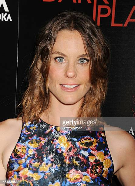 Actress Ashley Williams arrives at the Premiere Of DIRECTV's 'Dark Places' at Harmony Gold Theatre on July 21 2015 in Los Angeles California
