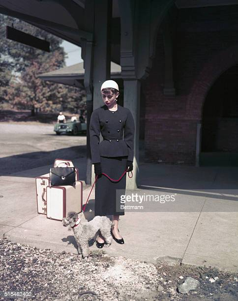 Actress Audrey Hepburn on the set of her movie Sabrina She is doing a scene