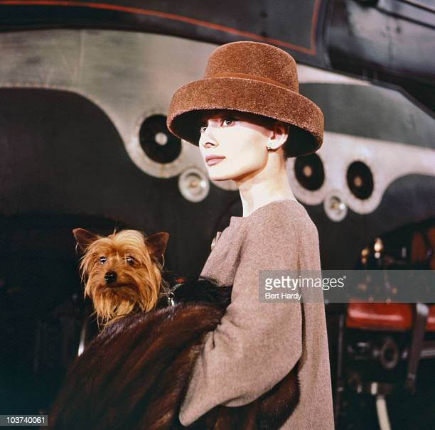 Actress Audrey Hepburn pictured carrying a dog while wearing a fur hat on the set of 'Funny Face' 1956 Original Publication Picture Post 8540 Audrey...